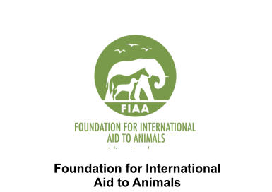 Foundation for International Aid to Animals
